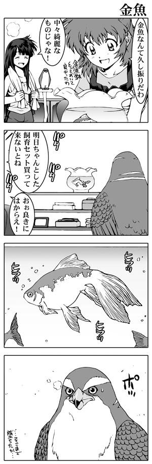 女子高生信長ちゃん!!-夏祭り編-第19話
